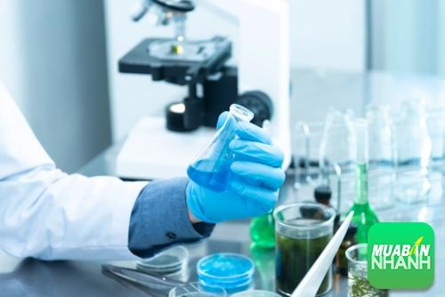 Công nghệ sinh học có dễ xin việc?